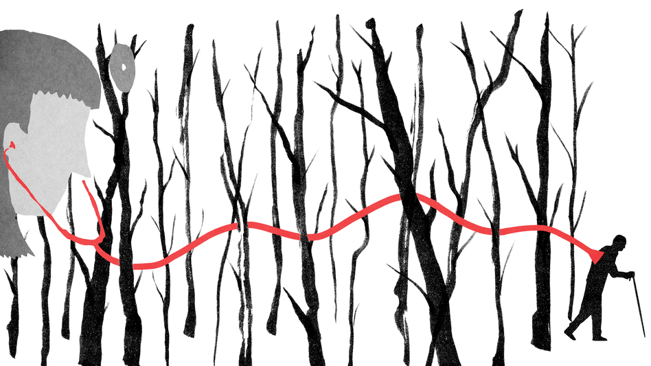 (Illustration by Daniel Horowitz for NPR)