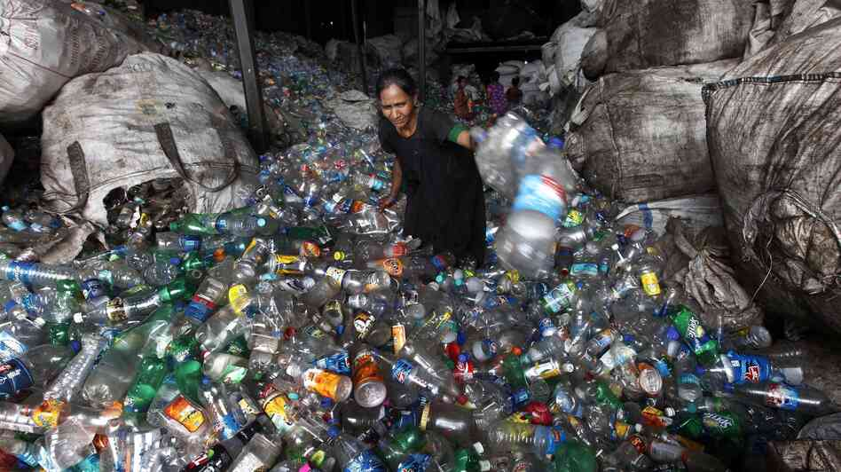 A woman worker sorts used plastic bottles at a recycle center in Mumbai, India.