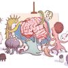 Illustration by Benjamin Arthur for NPR