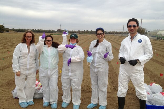 University of California, Davis food safety field scientists Michele Jay-Russell, Paula Kahn-Rivadeneira, Anna Zwieniecka, Navreen Pandher and Peiman Aminabadi celebrate the first day of their experiment testing E. coli survival in soil.