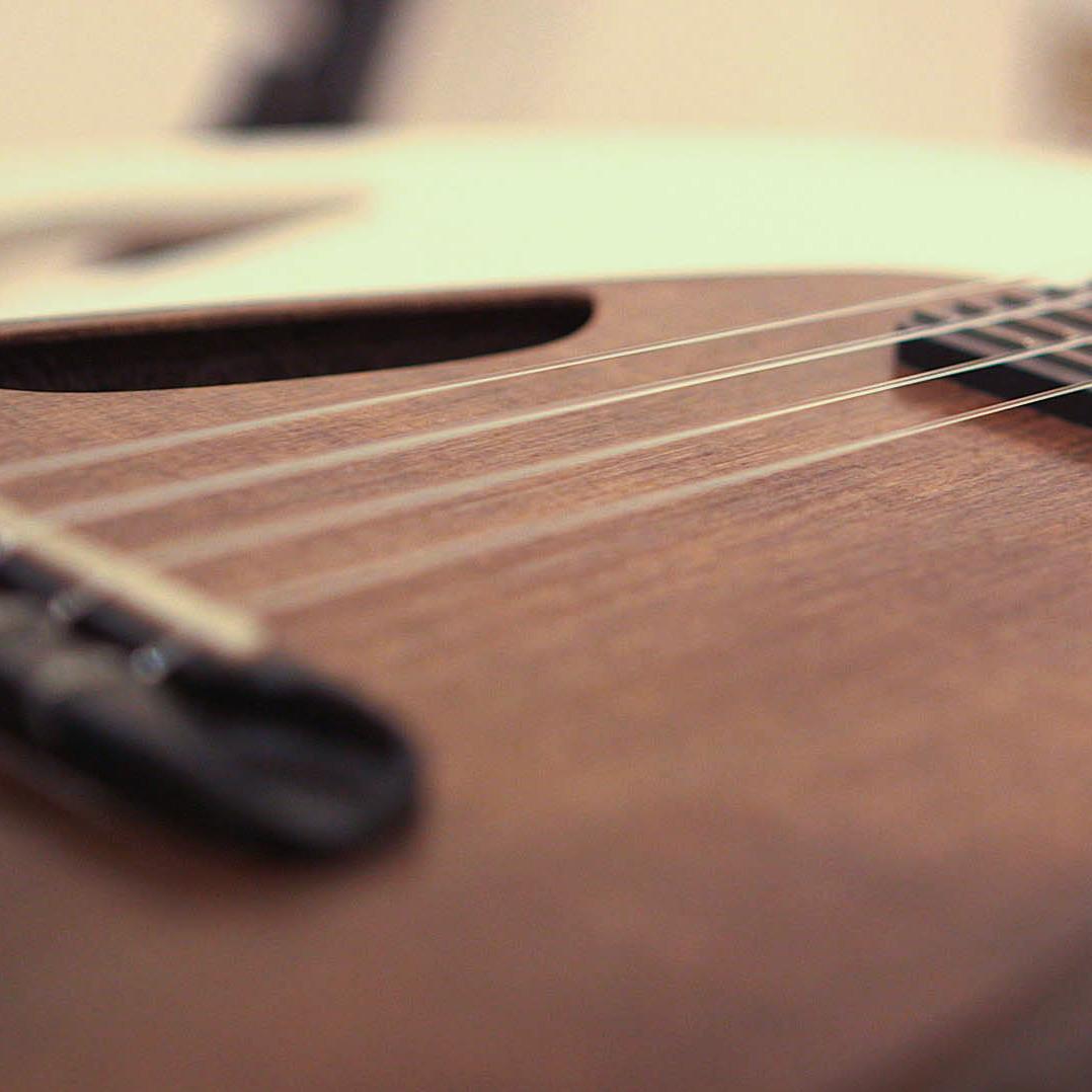 Blackbird ukulele