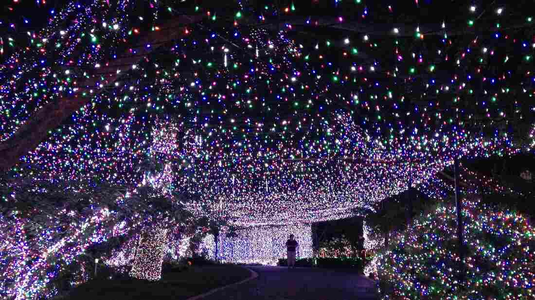 Decorating their house and yard with more than 31 miles' worth of lights, an Australian family has reclaimed a Guinness world record in Canberra, Australia.