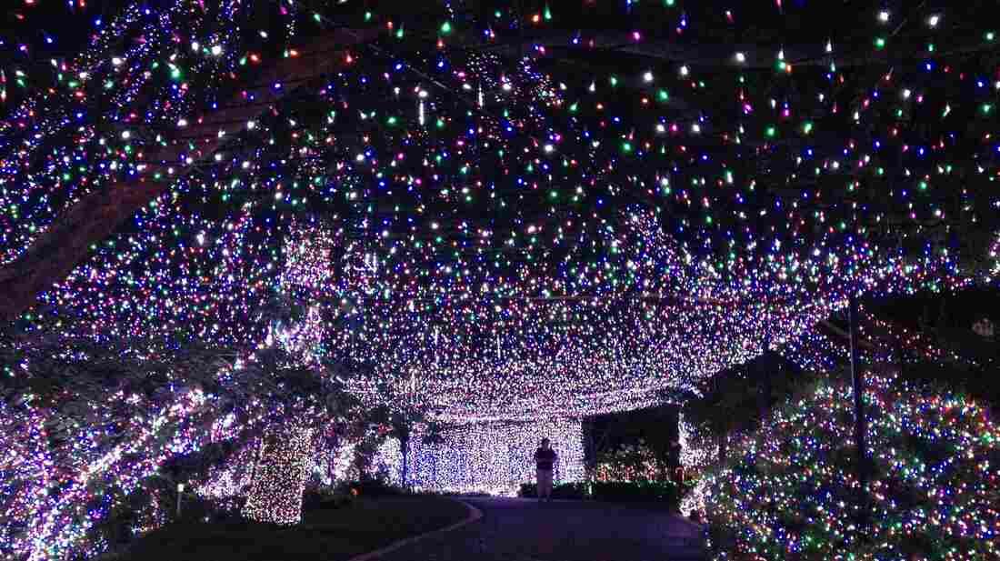 new type of christmas lights
