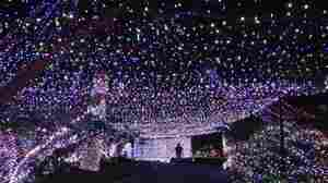 500,000 Lights: Family's Christmas Display Sets World Record
