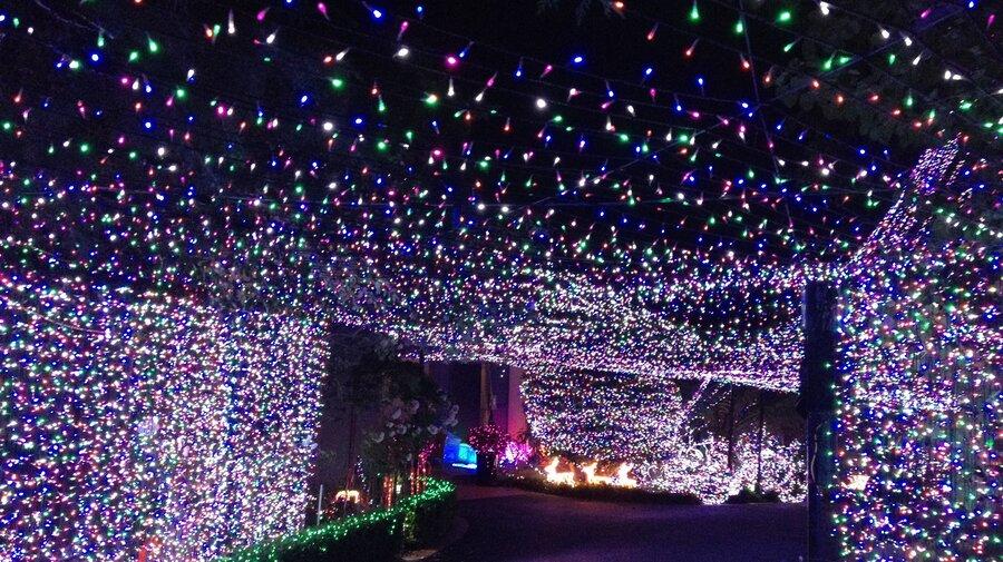500000 lights familys christmas display sets new world record in australia the two way npr - Local Christmas Lights Displays