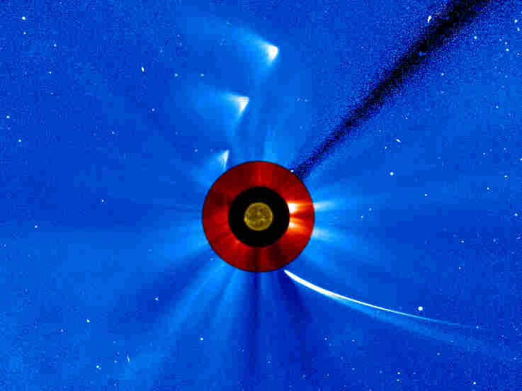 """NASA took a series of images to create this """"timelapse"""" view of comet ISON's trip around the sun."""