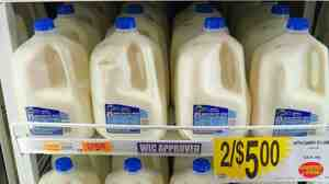 Sticker shock in the dairy aisle? If the government fails to pass the farm bill, milk prices could spike sometime after the first of the year.