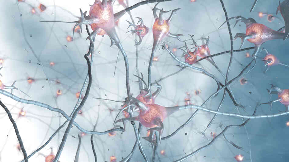 An illustration showing synapses in the brain.