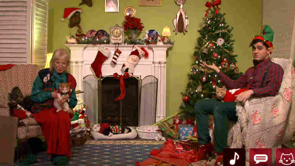 "A still image taken from Christmas Cat TV, which features an eight-hour streaming video of a ""cat lady"" and an elf hanging out with cats — some of them in holiday sweaters."