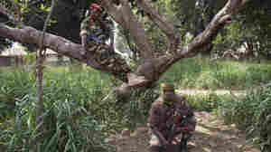 Violence Escalates In Central African Republic; U.N. OKs Troops