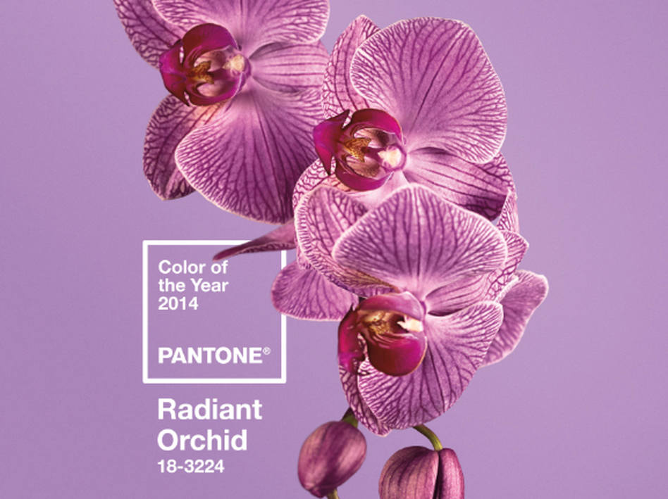 'Radiant Orchid' is Pantone's Color of the Year for 2014. (Pantone)
