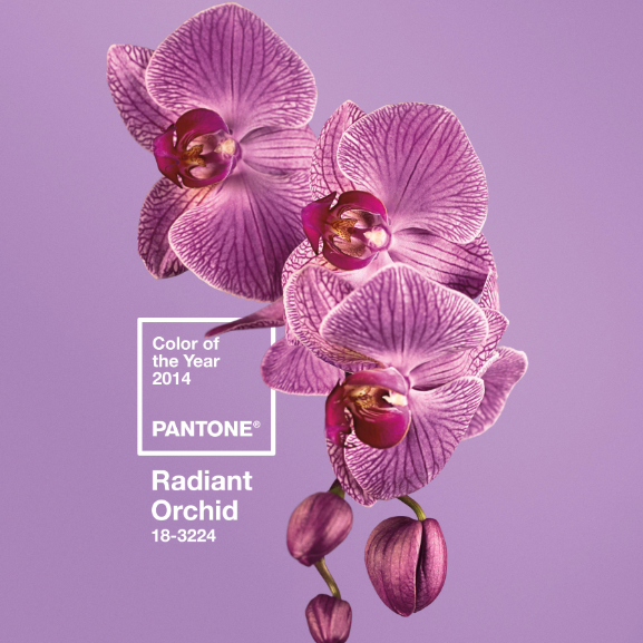 'Radiant Orchid' is Pantone's Color of the Year for 2014.