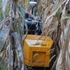 Rowbot is designed to fit in between the rows of crops. Moving up and down each row, a fleet of 20 bots could fertilize and monitor the corn crops during the growing season.