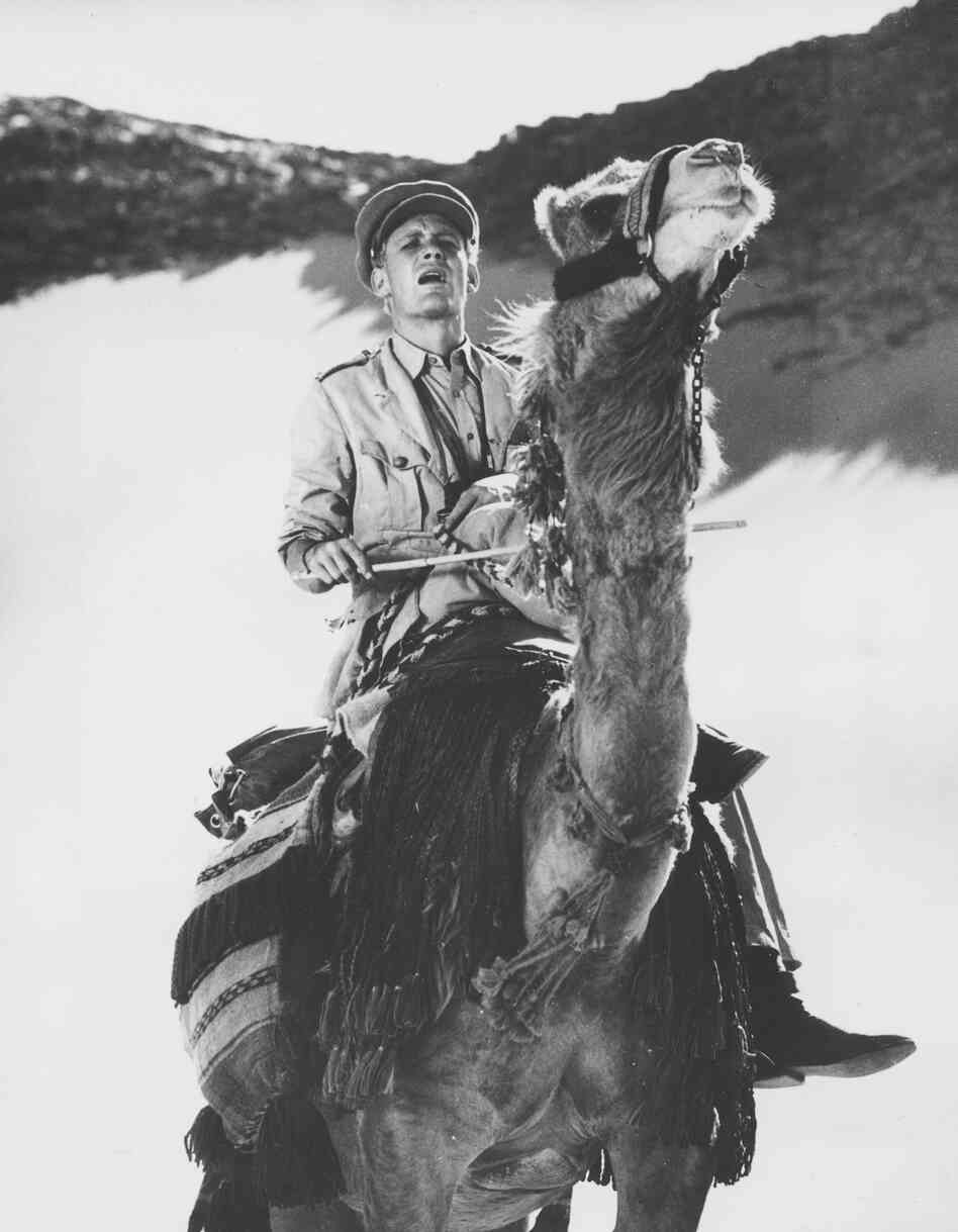 "Peter O'Toole rides across the desert in Jordan during the filming of Lawrence of Arabia in November 1961. He says that at first, learning to ride a camel was ""impossible."""