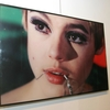 A photograph of Edie Sedwick is displayed at the Edie Sedgwick Exhibit opening party at Gallagher's Art & Fashion Gallery on February 2, 2005 in New York City.