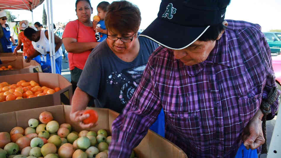Food banks have become a primary source of nutrition for rural farmworker commun