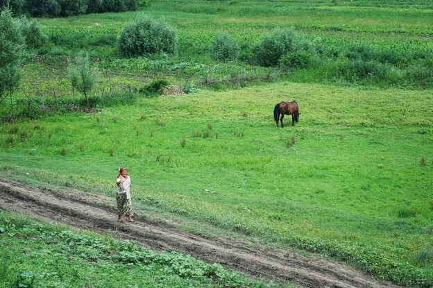 A dirt road in Vaslui County, Romania, leads to the home of Ionuts, a boy who was reintegrated into his biological family though a county program that organizers hope will serve as a national model.