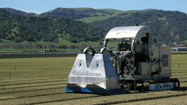 A lettuce thinner created by an agricultural tech startup uses cameras and sensors to thin lettuce rows. Salinas,