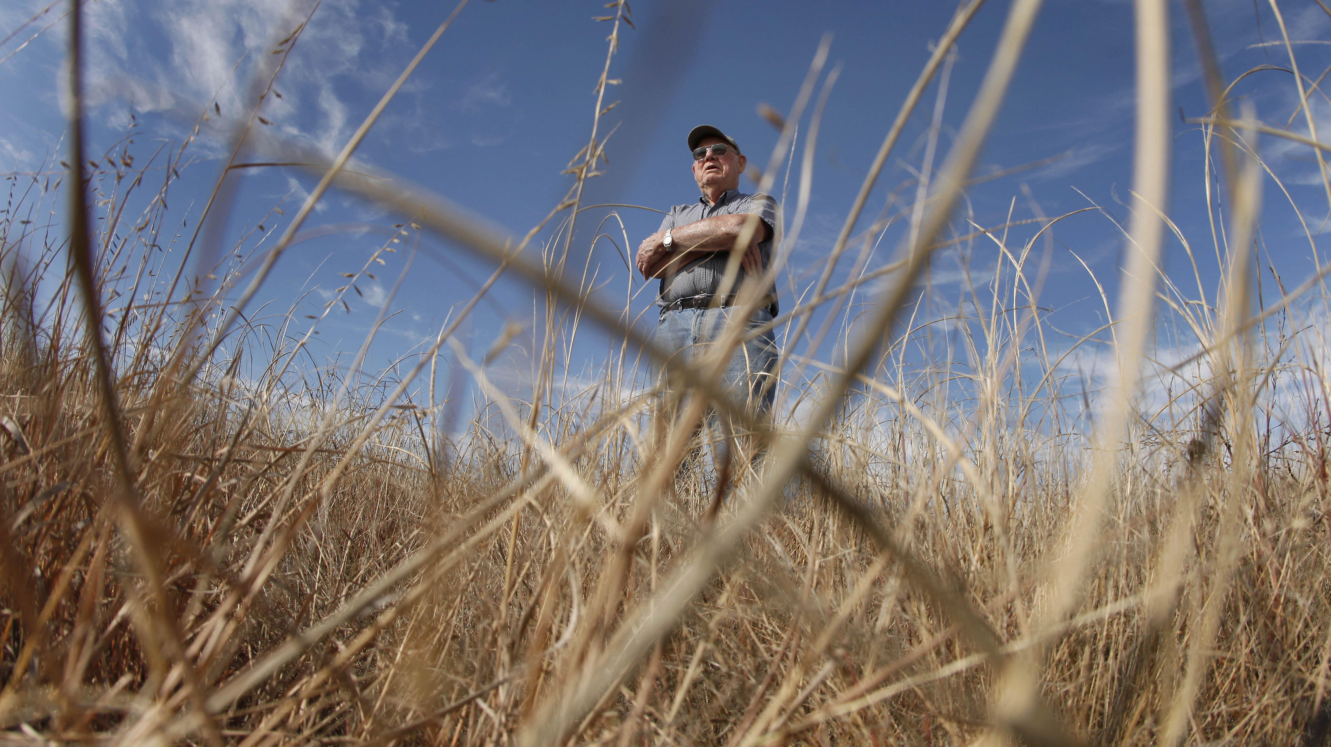 Grasslands Get Squeezed As Another 1.6 Million Acres Go Into Crops