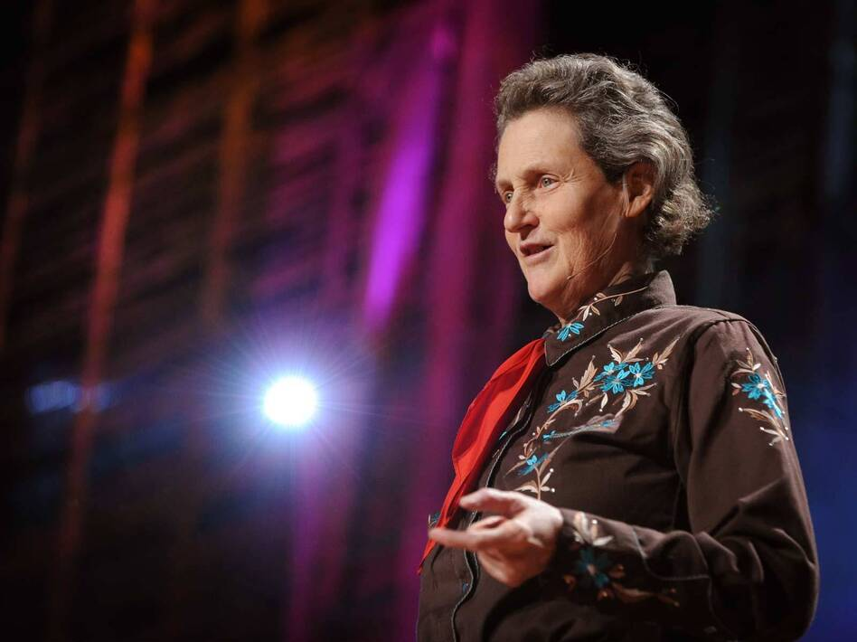 """""""People just don't see things, this is where you need visual thinkers like me ... we need the different kinds of minds."""" — Temple Grandin (James Duncan Davidson/TED)"""