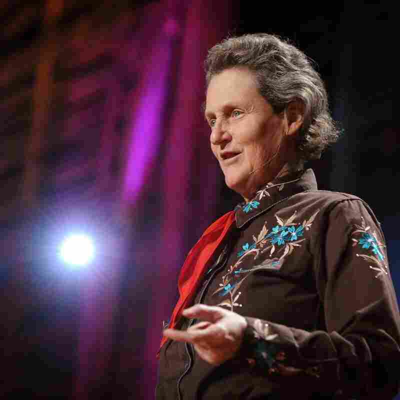 Temple Grandin: Can Autism Be An Asset?