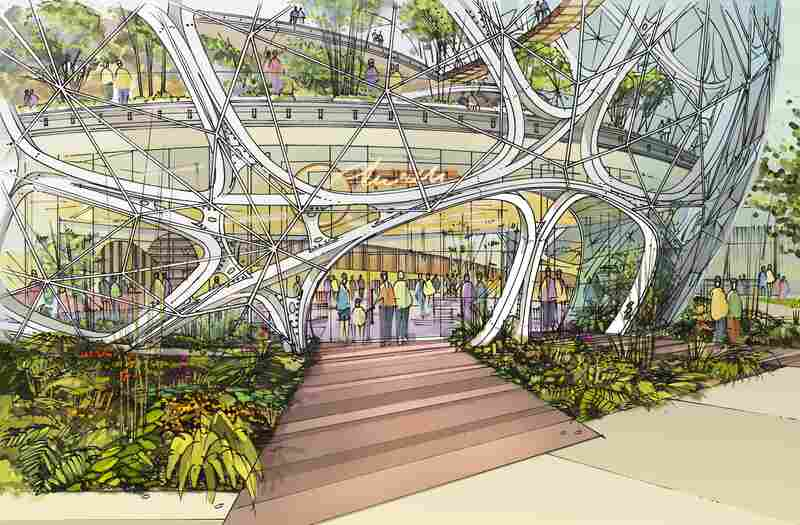 A sketch of the entrance to Amazon's new headquarters, which features three immense plant-filled spheres. They are slated to open in 2016.