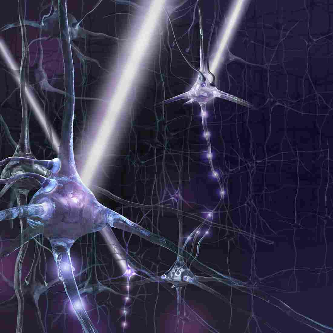 A technique called optogenetics is being used in the laboratory to observe and control what brain circuits are doing in real time.