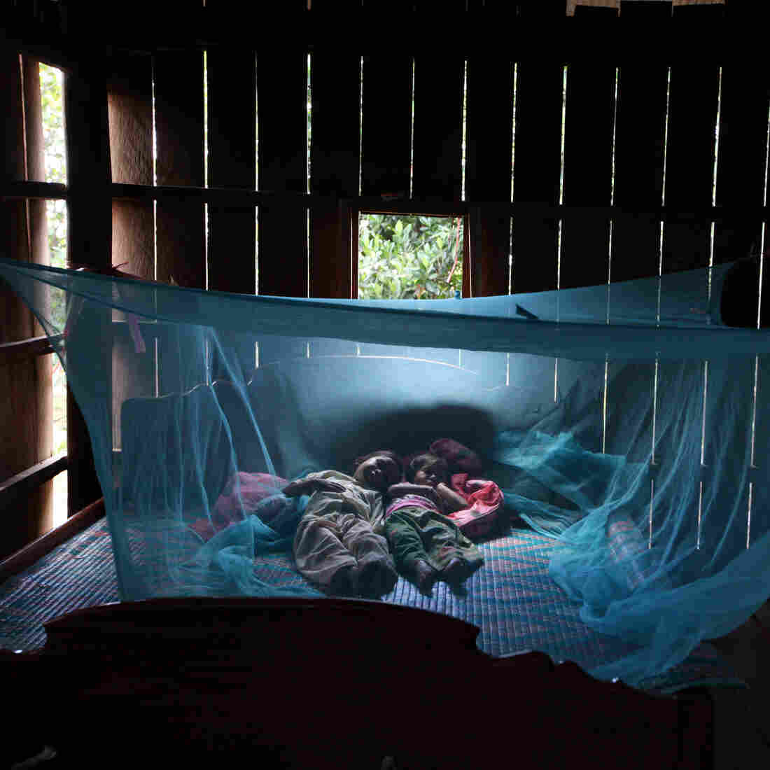Why Ending Malaria May Be More About Backhoes Than Bed Nets