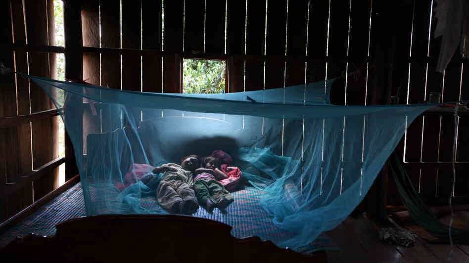 Yonta, 6, rests with her sister Montra, 3, and her brother Leakhena, 4 months, under a mosquito bed net in the Pailin pr