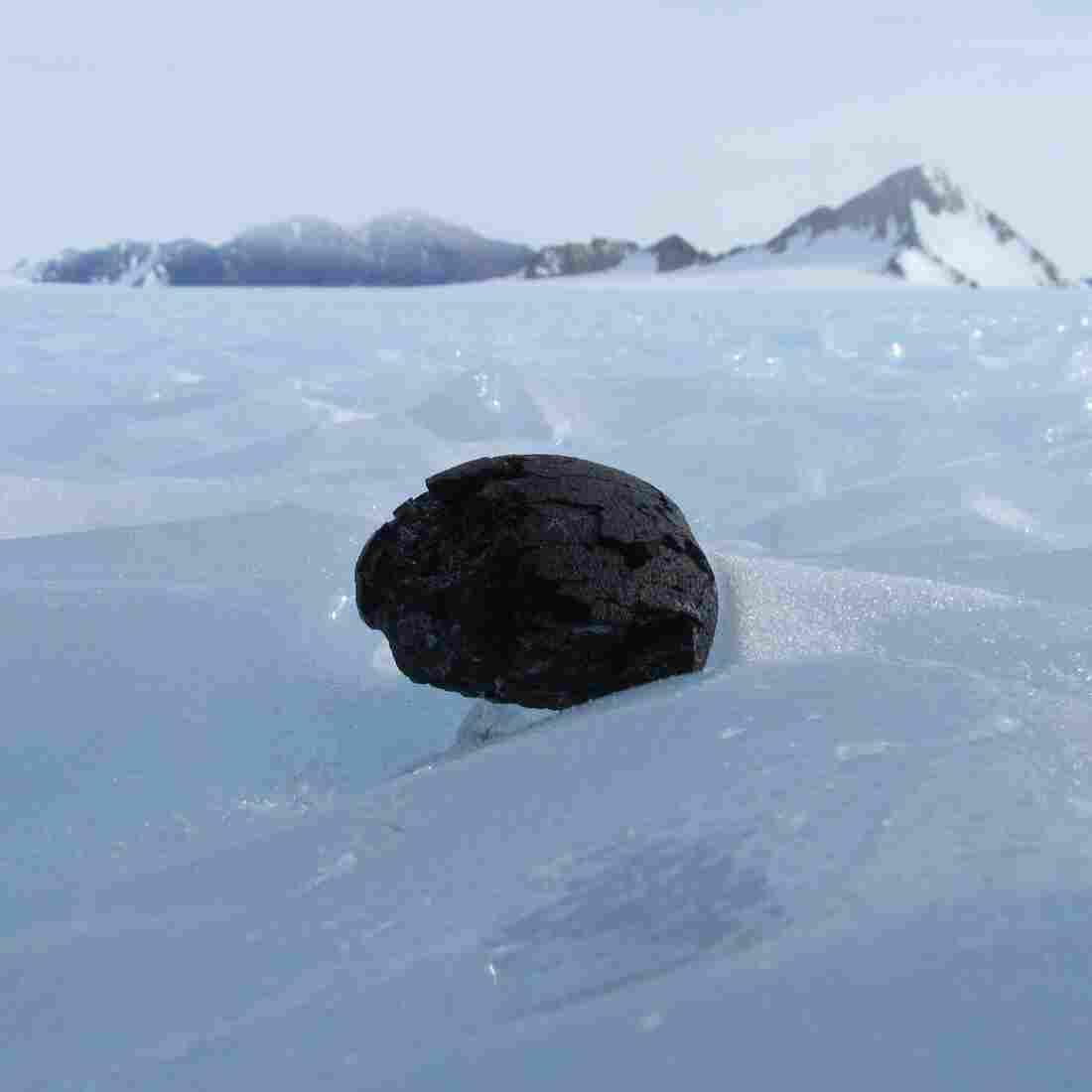 The Hunt For Meteorites Begins In Antarctica