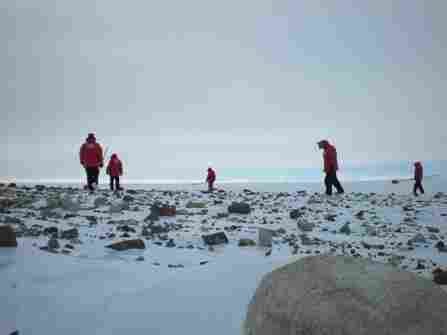 Researchers search for meteorites among a scattering of rocks deposited by a glacier.