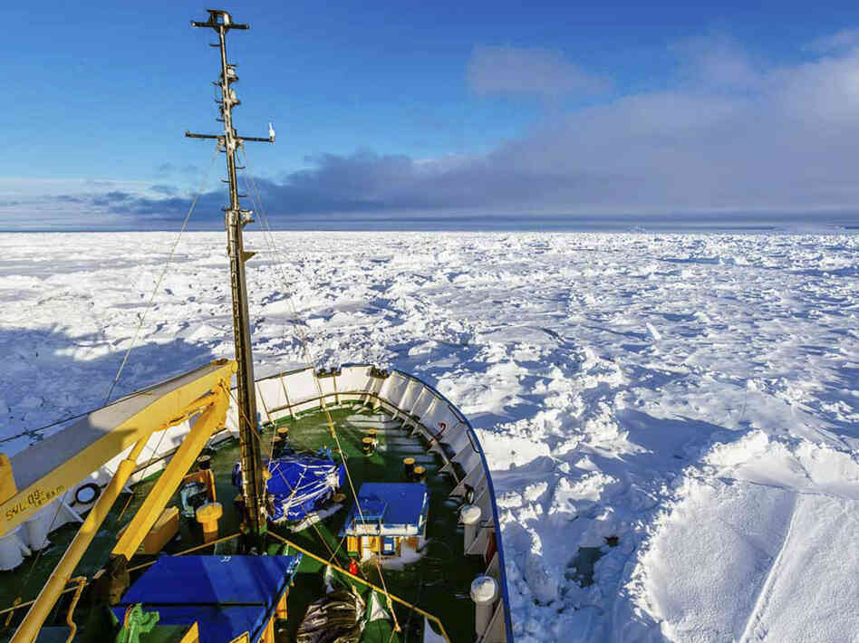 Nowhere to go: A view from the MV Akademik Shokalskiy, which is trapped in thick Antarctic ice 1,500 nautical miles south of Hobart, Australia.