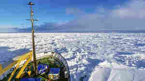 Third Icebreaker Fails To Reach Stranded Ship In Antarctic