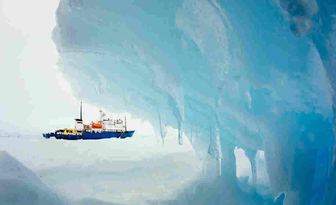 Framed by ice: the MV Akademik Shokalskiy, which has been stuck in Antarctic ice since Christmas Eve.