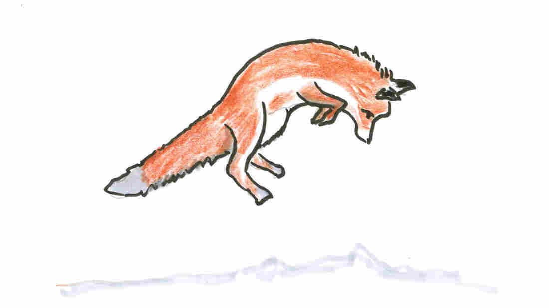 A leaping fox.