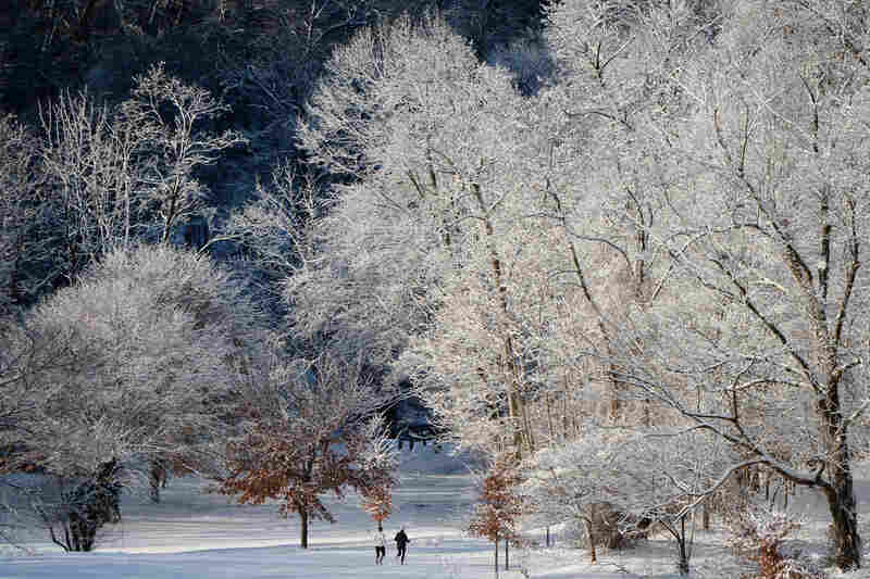 Joggers run through snow-covered Rock Creek Park in Washington, D.C.
