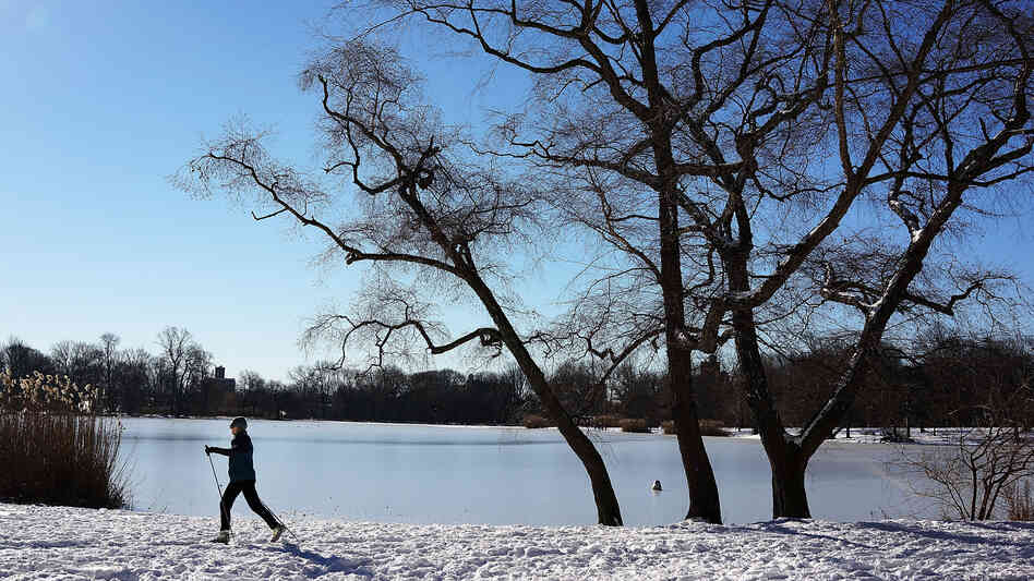 "A woman cross-country skis in Prospect Park in Brooklyn, N.Y., on Saturday. The National Weather Service is warning of ""life-threatening wind chill"" amid a record-br"