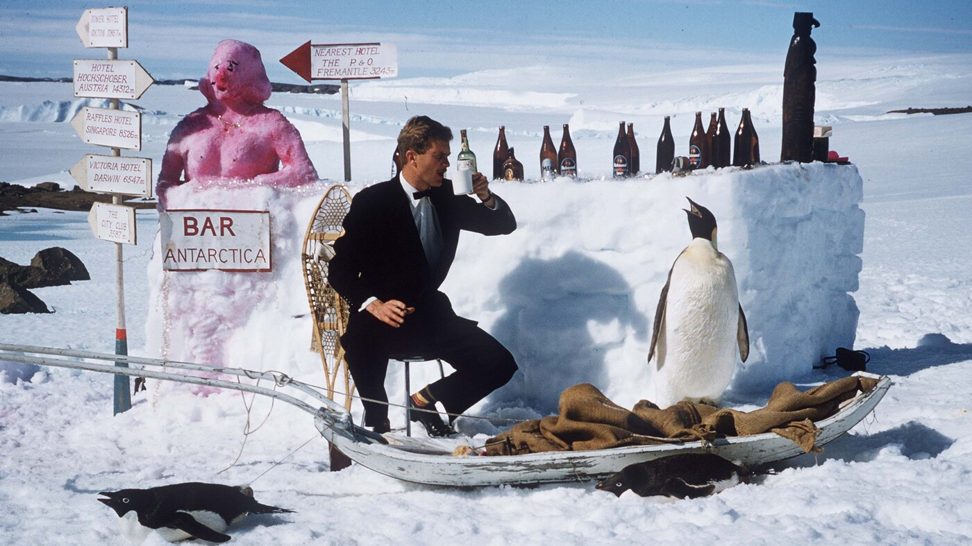 Think you 39 re cold and hungry try eating in antarctica for Antarctica cuisine