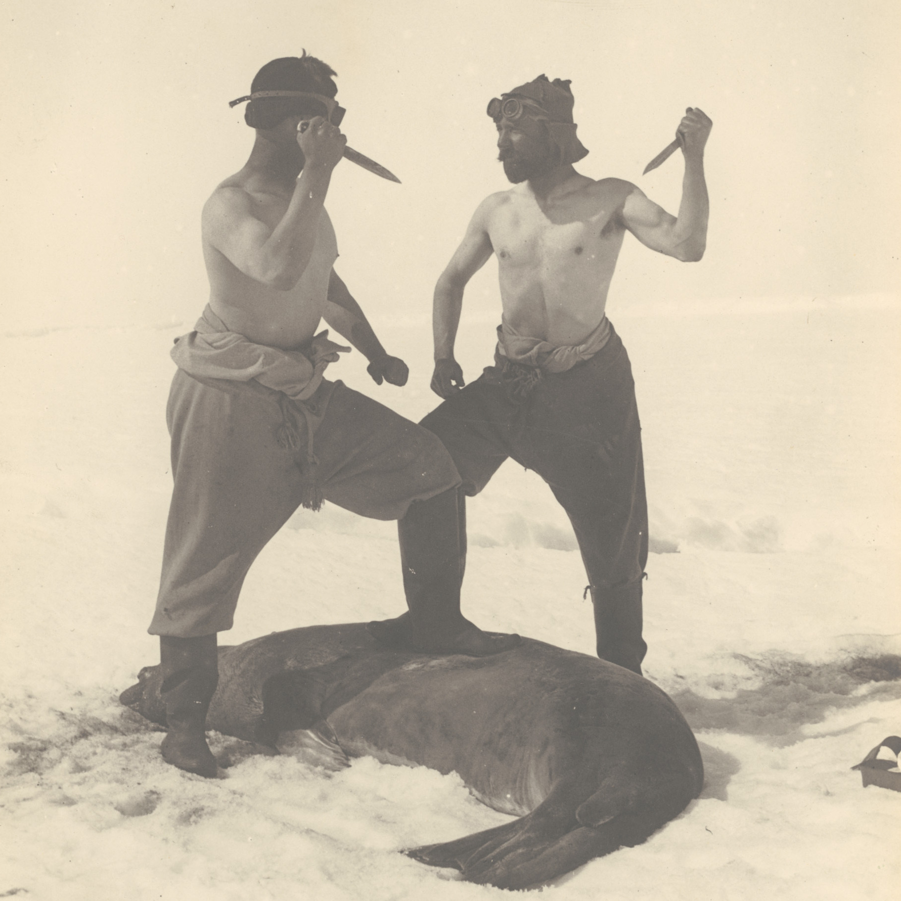 Frank Wild -- Ernest Shackleton's second-in-command on the Endurance voyage -- and M.H. Moyes slay a Weddell seal.