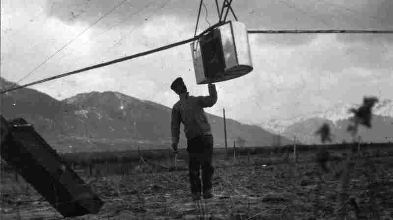 Before Drone Cameras: Kite Cameras!