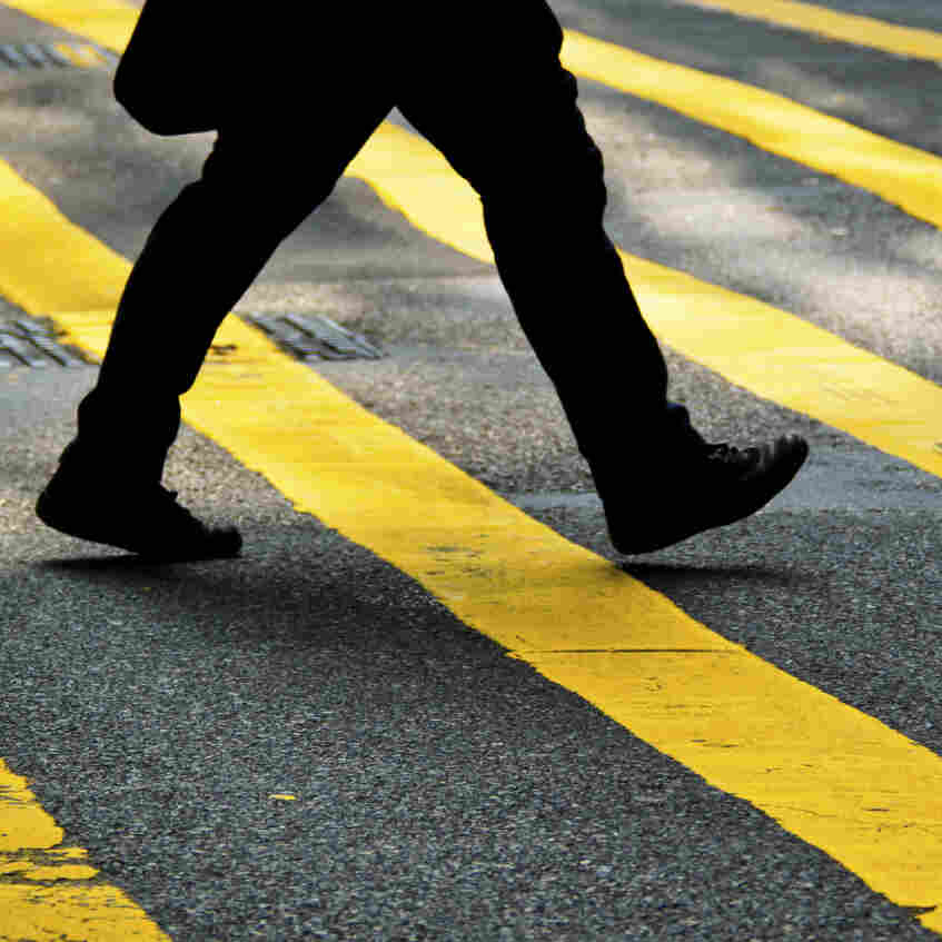 The Anthropology Of Walking