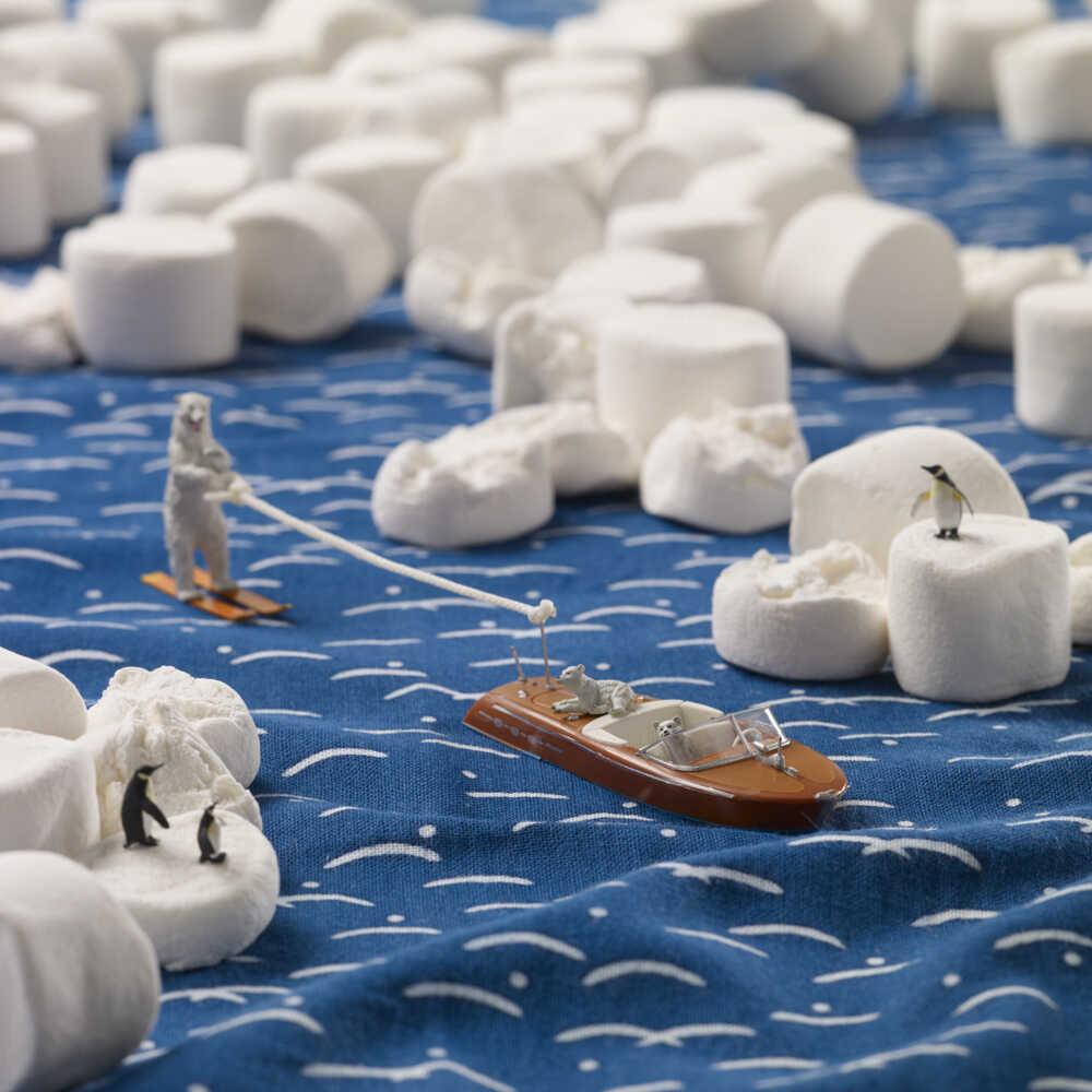 A marshmallow glaciers.