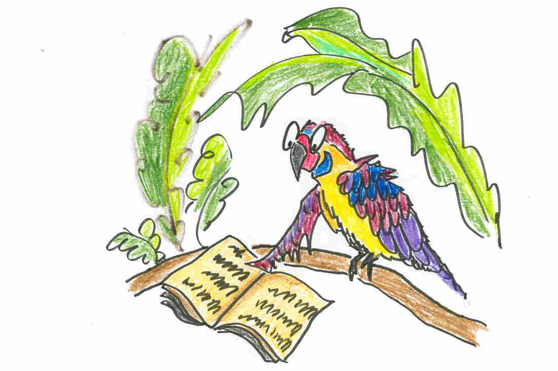 An intelligent parrot enjoys a book.
