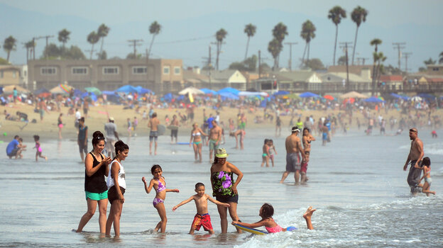 About 16,000 stingrays live along the shoreline of Seal Beach in Southern California, inflicting around 400 injuries each year.