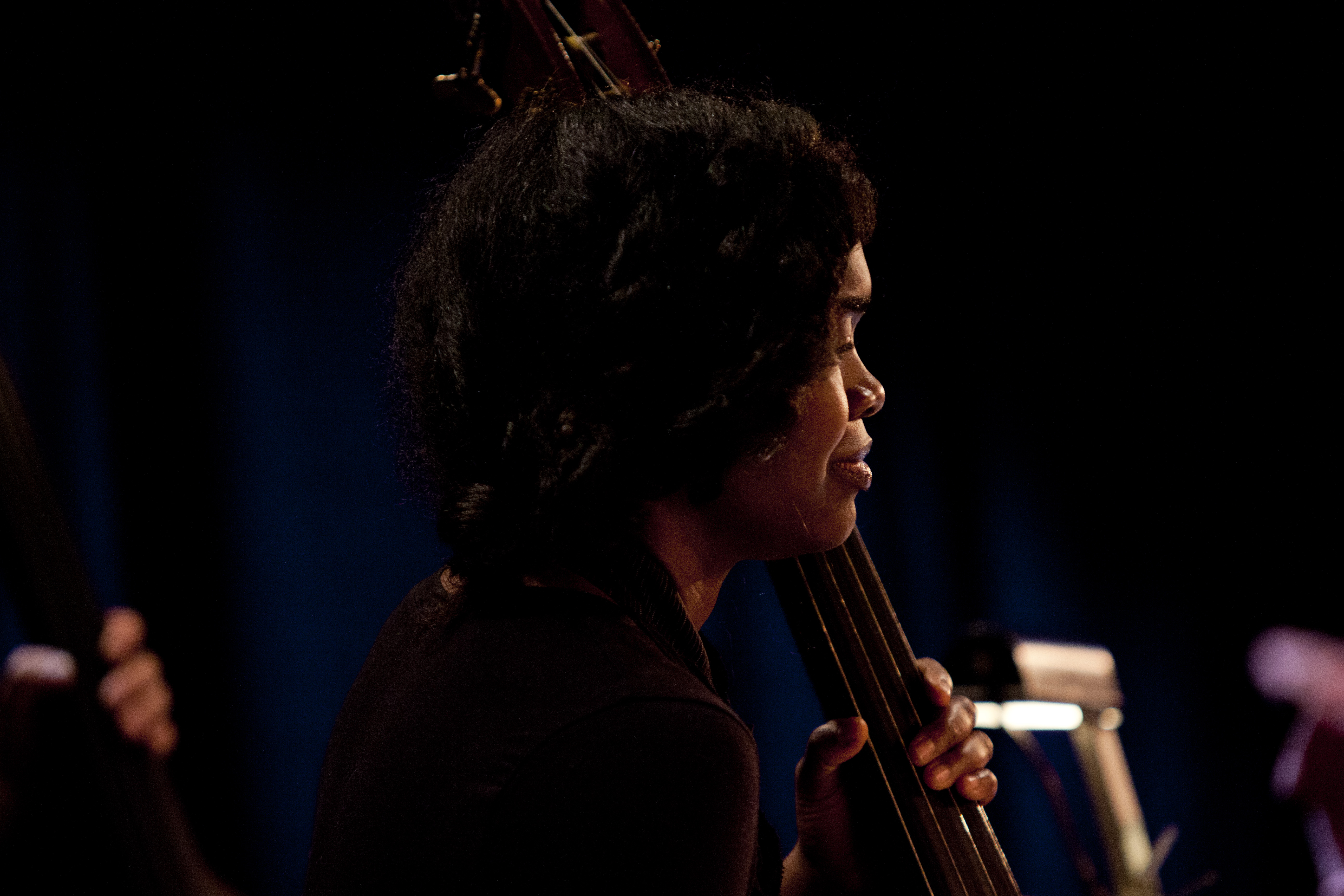 Mimi Jones was one of two bassists in Rudy Royston's 303.