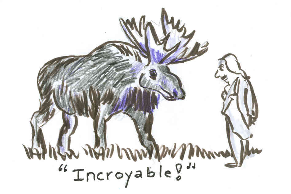 "A French gentleman staring at a moose thinking ""Incredible."" Or ""Incroyable!"""