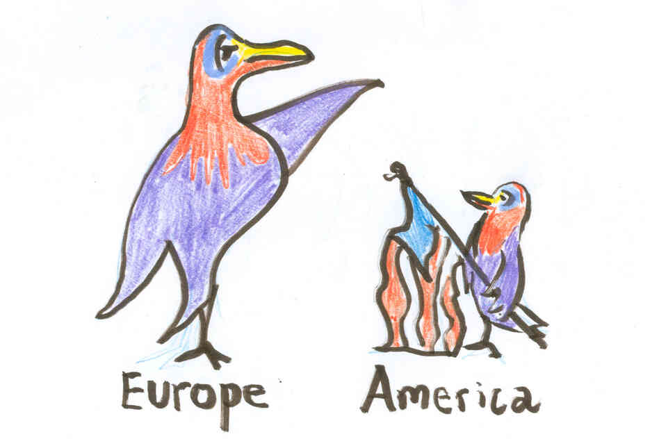 A large powerful European bird and its American (smaller) version.