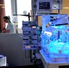 A baby born too soon continues to develop and grow inside an incubator at the neonatal ward of the Centre Hospitalier de Lens in Lens, northern France.