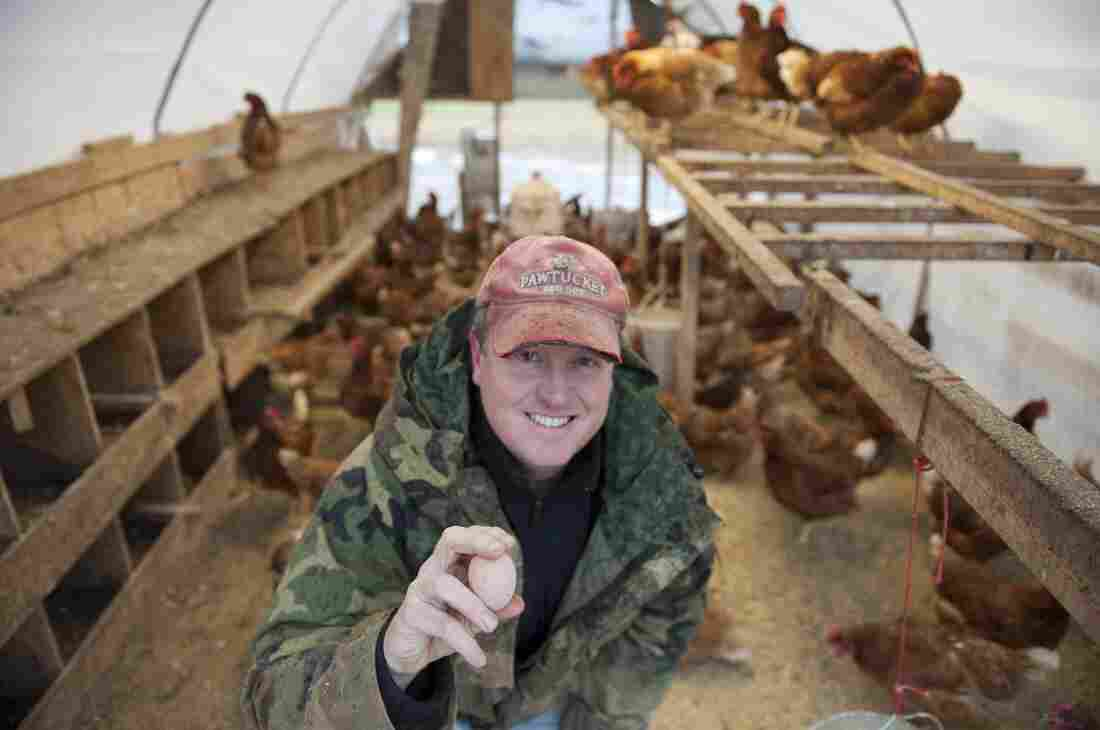 Jason Amundsen of Locally Laid Egg Co. is one of four finalists in Intuit's Small Business, Big Game competition. Intuit says some 15,000 small businesses entered the contest.