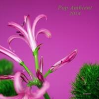 Pop Ambient 2014.
